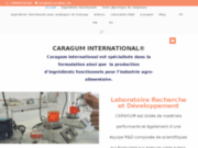 CARAGUM : Additifs Alimentaires Arômes Gommes