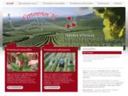 screenshot http://www.ceptentrional.fr prestations viticoles en vallée du rhône
