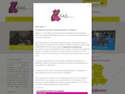 screenshot http://www.cfas-auvergne.com Centre de Formation Apprentis Spécialisé Auvergne