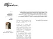 screenshot http://www.chambredenarcisse.fr la chambre de narcisse, brno del zou