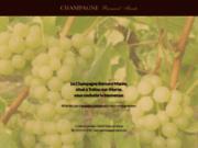 screenshot http://www.champagne-mante.com champagne bernard mante