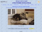 screenshot http://www.chatteriedurandal.com/ norvegien - chat norvegien chatterie durandal