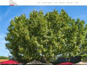 screenshot http://www.chez-ze.com Chez-ze restaurant pizzeria Marseille 13009 Calanques