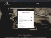 screenshot https://chicchauffeur.fr VTC Bordeaux