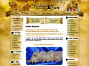 screenshot http://www.chiots-golden-retrievers.fr Élevage de golden retrievers : le domaine of sim