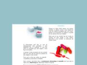 screenshot http://www.cicada.fr dépannage informatique et solutions web cicada