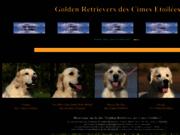screenshot http://www.cimesetoilees.com golden retriever, élevage familial des cimes etoilées