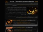 screenshot http://www.ciprocess.com aide et formalités pour s'implanter en chine