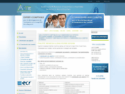 screenshot http://www.commissaire-aux-apports-fr.com commissaire aux apports audit conseils