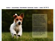 screenshot https://www.comportementaliste-gironde.fr Dressage de chien à Bordeaux