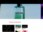 screenshot http://www.conseillere-de-beaute.fr luxe : afcb - association française