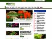 screenshot http://www.consoglobe.com/biocarburant/ biocarburant sur consoglobe