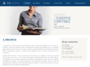 screenshot http://cs-conseil-ec.fr/ CS Conseil