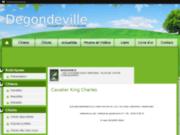 Elevage Degondeville