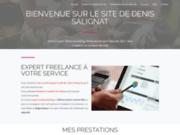Denis SALIGNAT Expert freelance en webmarketing