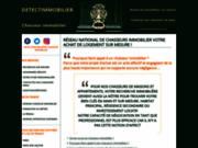 screenshot http://www.detectimmobilier.com chasseur immobilier herault