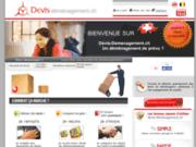 screenshot http://www.devis-demenagement.ch devis déménagemem.ch
