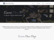 screenshot http://www.dew-drop.be/ dew-drop, spécialiste dans l'élevage de poney de sport.