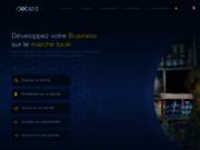 Dobiza la plateforme africaine des affaires
