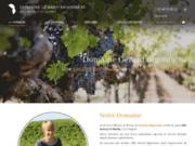 screenshot http://www.domaine-bigonneau.com vins rouge, blanc et rosé