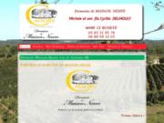 screenshot http://www.domainemaisonneuve.fr Vignoble maison neuve vin de  Montcuq