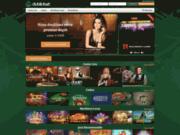 Dublinbet Casino : Votre casino en ligne
