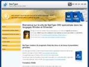 screenshot http://www.e-nextgen.fr nextgen – spécialiste en windev et silverdev.