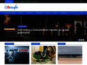 screenshot http://www.e-vendee.fr tourisme en vendée
