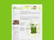screenshot http://eburo.fr eburo, le bois énergie renouvelable