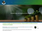 screenshot http://www.ecoavenirconseil.com conseil en développement durable qse rhône-alpes