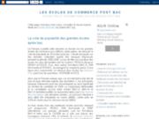 screenshot http://ecolecommerceapresbac.blogspot.com ecoles de commerce après bac