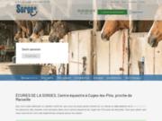 Cours d'équitation près de Aubagne