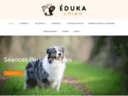 Eduka Chien - cours pour éduquer son chien