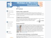 screenshot http://www.eft-ressource.fr eft ressource: stages et seances eft a toulouse
