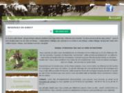 Elevage canin en Isère (38) - Clos de la Vallée Blanche
