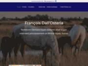 screenshot http://www.equus-dentiste-equin.com François Dall'Osteria: dentiste équin