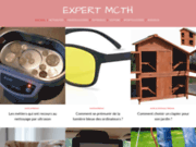 screenshot http://www.expert-mcth.fr expert mcth syndycat professionnel