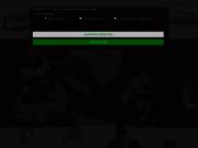 screenshot http://www.fiesta-republic.com fiesta republic