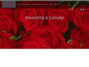 screenshot http://www.fleuriste-amaryllis.com/ fleuriste à lomme
