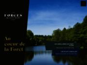 screenshot http://www.forgesdupontdoye.com/ hôtel restaurant à habay-la-neuve