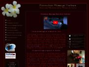 screenshot http://www.formations-massages.fr/ Ecole de massage à Paris