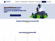 screenshot http://foxglove-partner.com Agence SEO