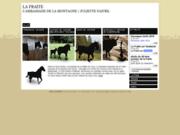 screenshot http://www.fraite-cheval.fr pension de cheval et élevage de chevaux haut-doubs