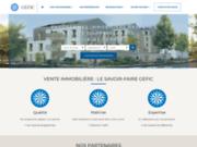 screenshot http://www.gefic.fr appartement neuf