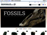screenshot http://geofossiles.com magasin geofossiles fossiles minéraux gemmes