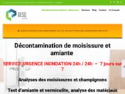 screenshot https://gesq.ca décontamination de moisissures