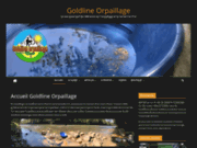screenshot https://www.goldlineorpaillage.fr/ L'association goldline orpaillage
