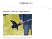 screenshot http://www.gruissan-info.com gruissan, station balnéaire du languedoc