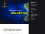 Emploi de consultant informatique: Guarani