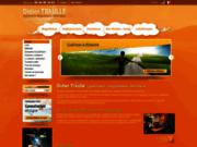 screenshot http://www.guerisseur-traulle.com/ rebouteux, guérisseur, magnétiseur nord, 59